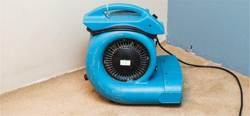 Dehumidifier on carpet