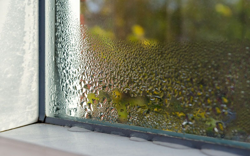 House window with condensation on the inside